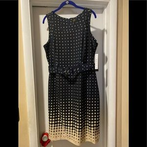 ILE New York  chambray polkadot blue ivory dress